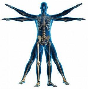 body-diagram-296x300